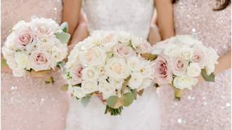 Full Service Wedding Planning - Excelsior Events, Inc.